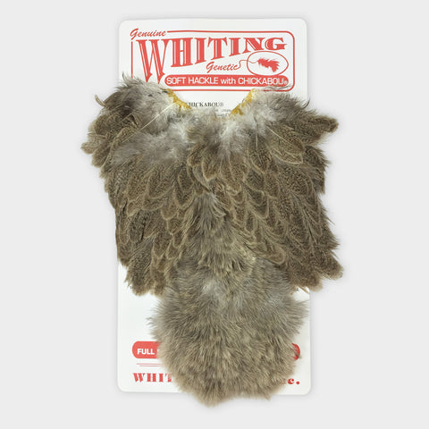 Whiting Brahma Soft Hackle / Chickabou