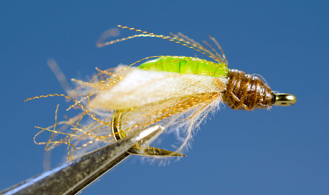 SN's Apple Caddis Pupa