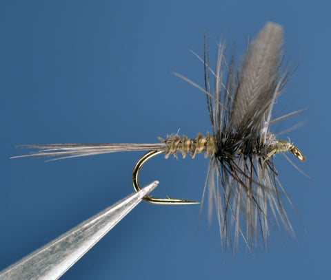 Blue Wing Olive Traditional, Biot Body