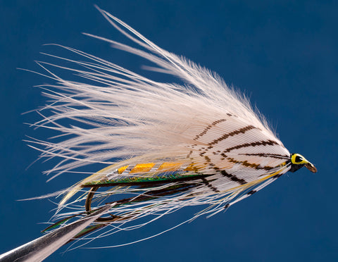 Gray Ghost Marabou