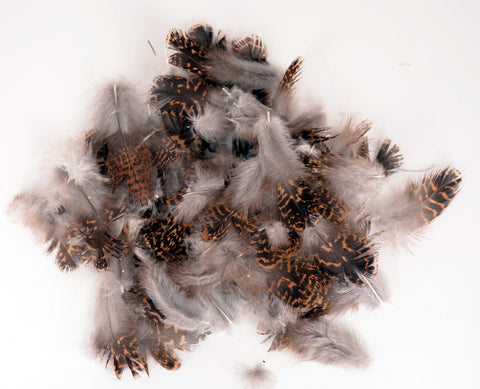 Hareline English Grouse Soft Hackle