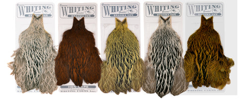 Whiting Farms - Brahma Hen Capes