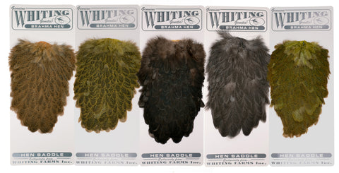 Whiting Farms - Brahma Hen Saddles