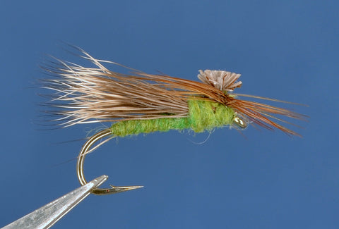 Parachute Caddis - Apple