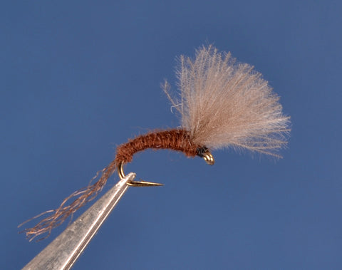 Paralep (Blue Quill) CDC Emerger