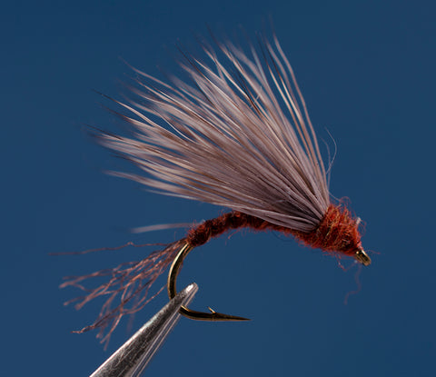 Red Quill Deer Emerger
