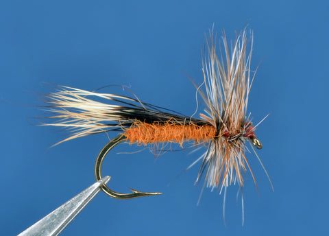 Chuck Caddis - Rust