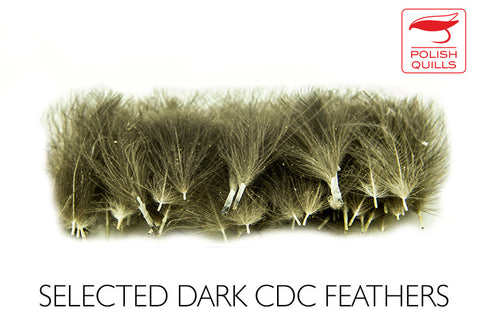 Polish Quills Selected CDC