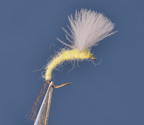 Sulphur CDC Emerger