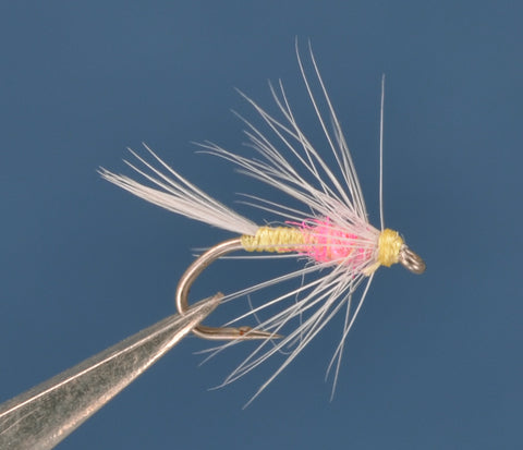 Tup's Indispensible Soft Hackle