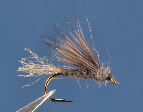 X Caddis - Gray Olive