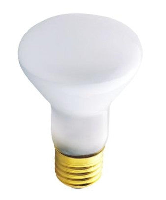 45 Watt R20 Incandescent Flood Light Bulb 45R20/FL/130