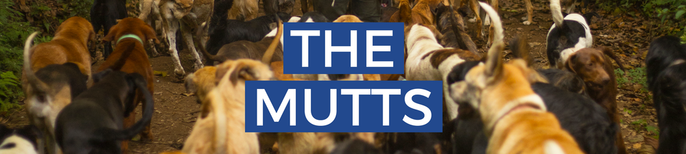The Mutts