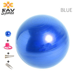 Sports Yoga Ball 65cm Ballance Pad Fitness Pilates