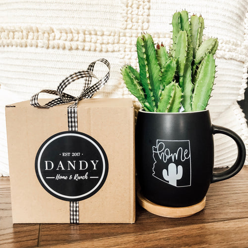Arizona Home Boxed Mug Set