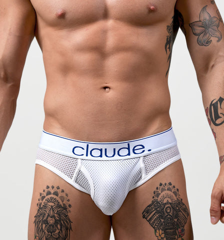 Project Claude Claude Mesh Brief