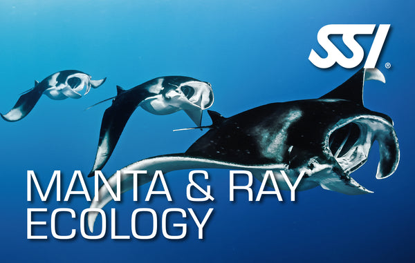 SSI Marine Education Bundle - Ecology and Identification