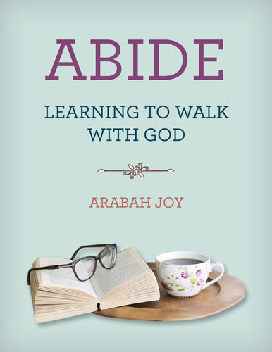 ABIDE: A Mini-Course for Walking with God and Living From Your Identity in Christ