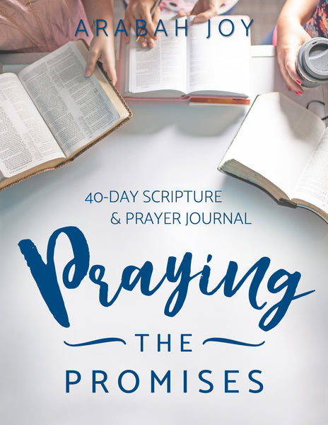 Original Praying the Promises 40-Day Prayer Journal