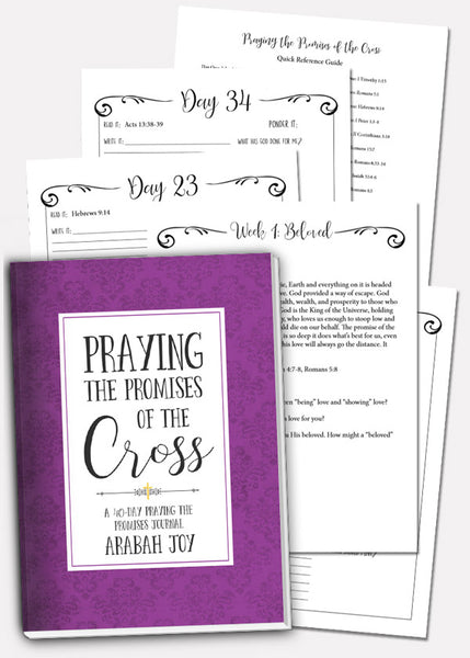 2019 Praying the Promises of the Cross Bundle