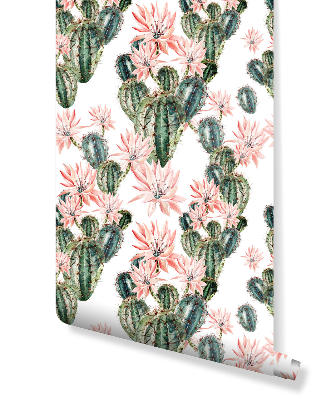 Cactus Temporary Wallpaper Floral Removable Peel and Stick Wall Decal with Colorful Flowers Succulents Cacti Wall Art Sticker CC052
