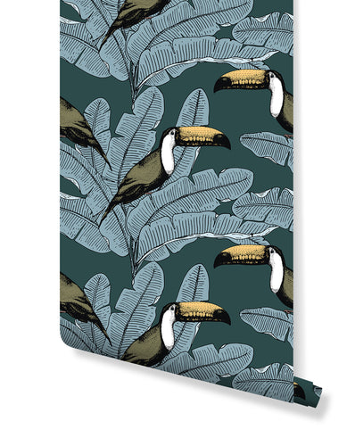Self Adhesive Tropical Toucan Removable Wallpaper CC211