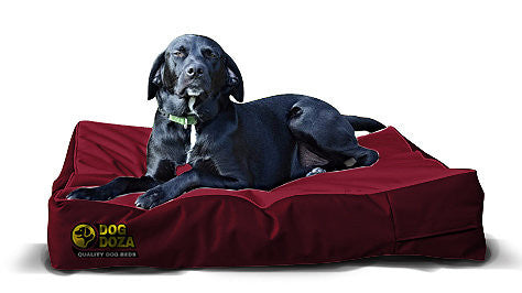 Waterproof Dog Beds - Pet Goodys