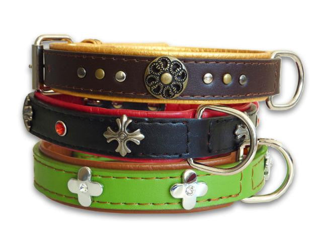 Ornament Floral Dog Collar - Medium - Pet Goodys