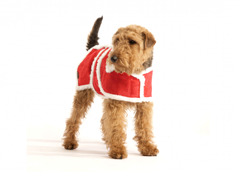 Christmas Red Wool Dog Coat - Pet Goodys