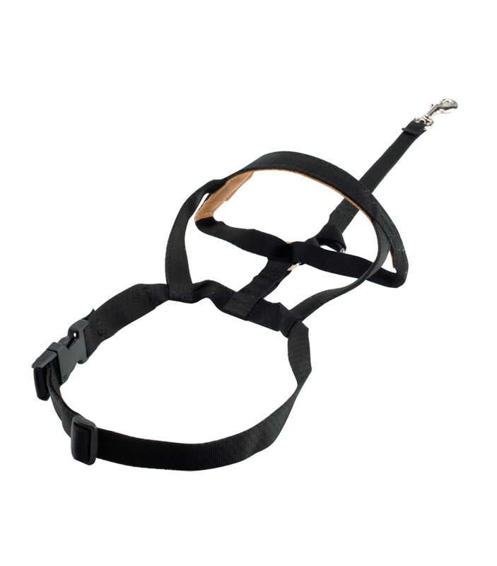 Halti Dog Headcollar Padded - Pet Goodys