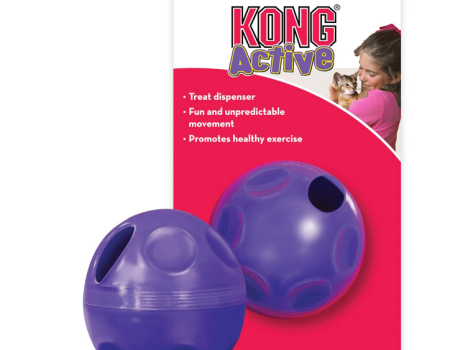 Kong Treat Ball Toy for Cats - Pet Goodys