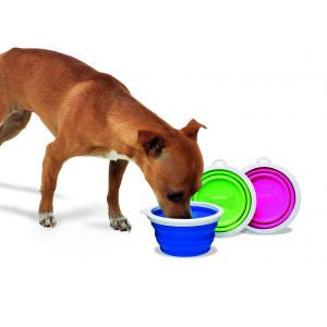Pet Silicone Travel Bowl With 1 Cup - Pet Goodys