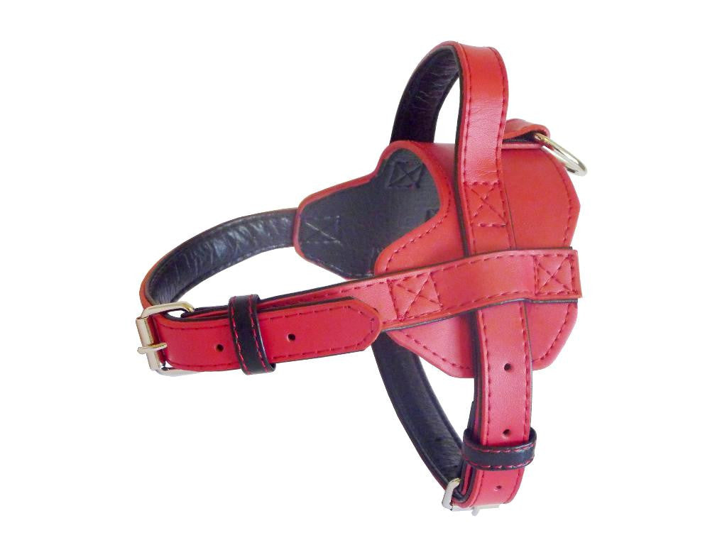 Fusion Red Dog Harness - Pet Goodys