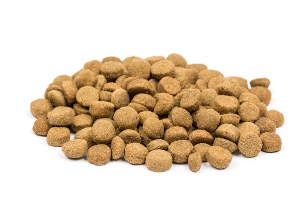 Pets Diet Puppy Food Various