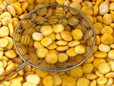 All About Lupin Beans