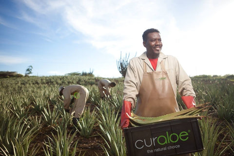 Curaloe Pure, Organic Aloe Vera products from The Truly Natural Company