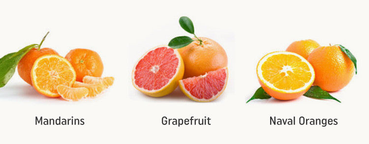 California Citrus– Mandarins, Grapefruit, Naval Oranges