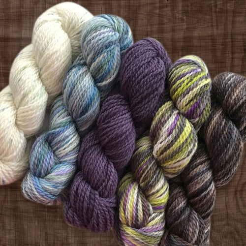 Fibre Arts Studio DK Mini Skein Set - Neutral
