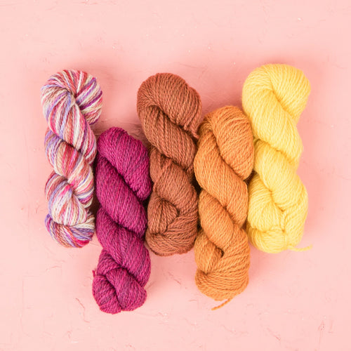Fibre Arts Studio DK Mini Skein Set - Warm