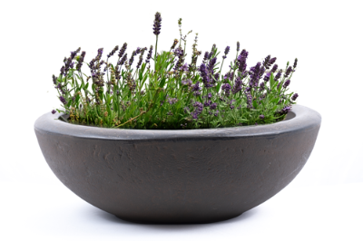"Premium hand painted garden planter - 21"" Lip Bowl in Rust"