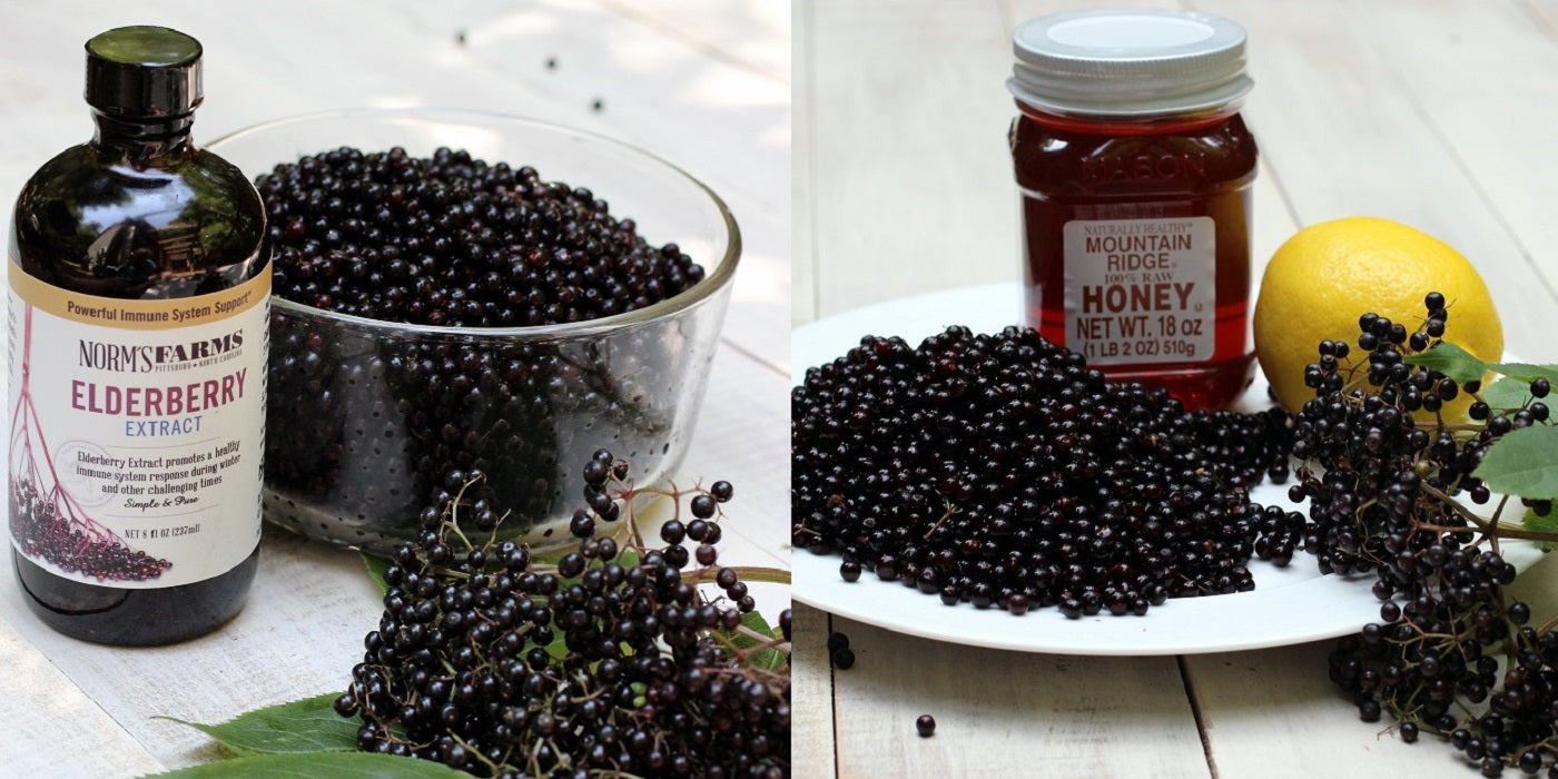 What is the Difference between an Elderberry Extract and a Syrup?