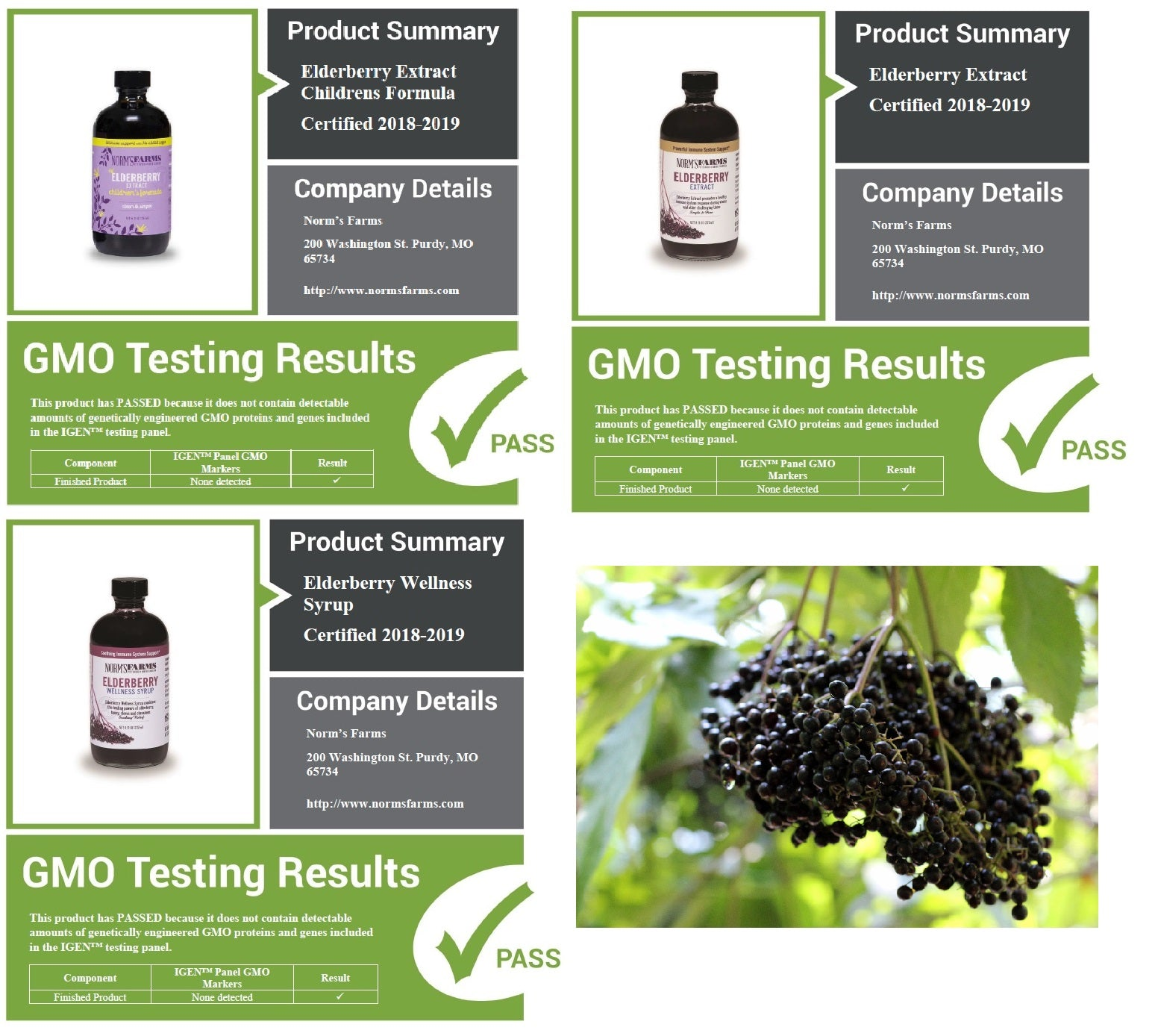 Norms Farms GMO free test results