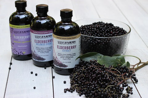 Norm's Farms Elderberry Supplements