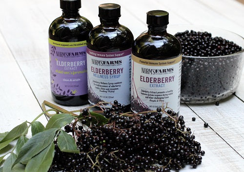 elderberry supplement trio with ripe elderberries in the fore ground