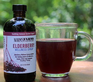 Elderberry Wellness Tea