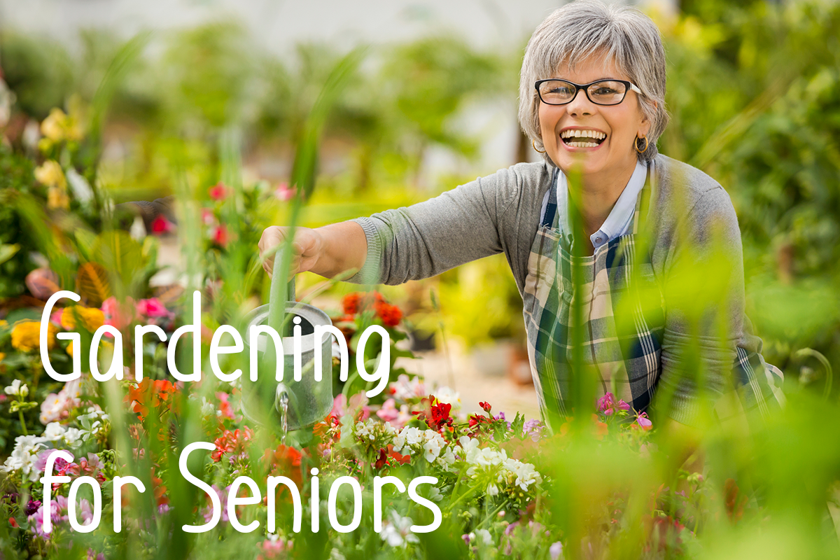 Everything a Senior Gardening Enthusiast Needs to Know