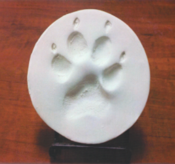 Clay Paw Print