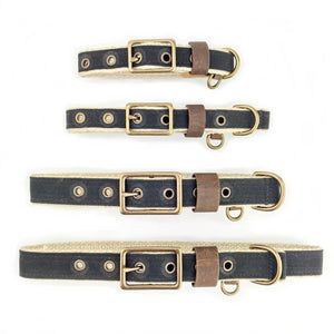 Waxed Canvas Buckle Collar