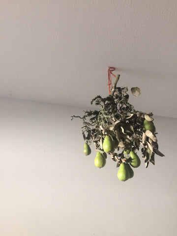 Daisy Fung flowers hanging from the ceiling