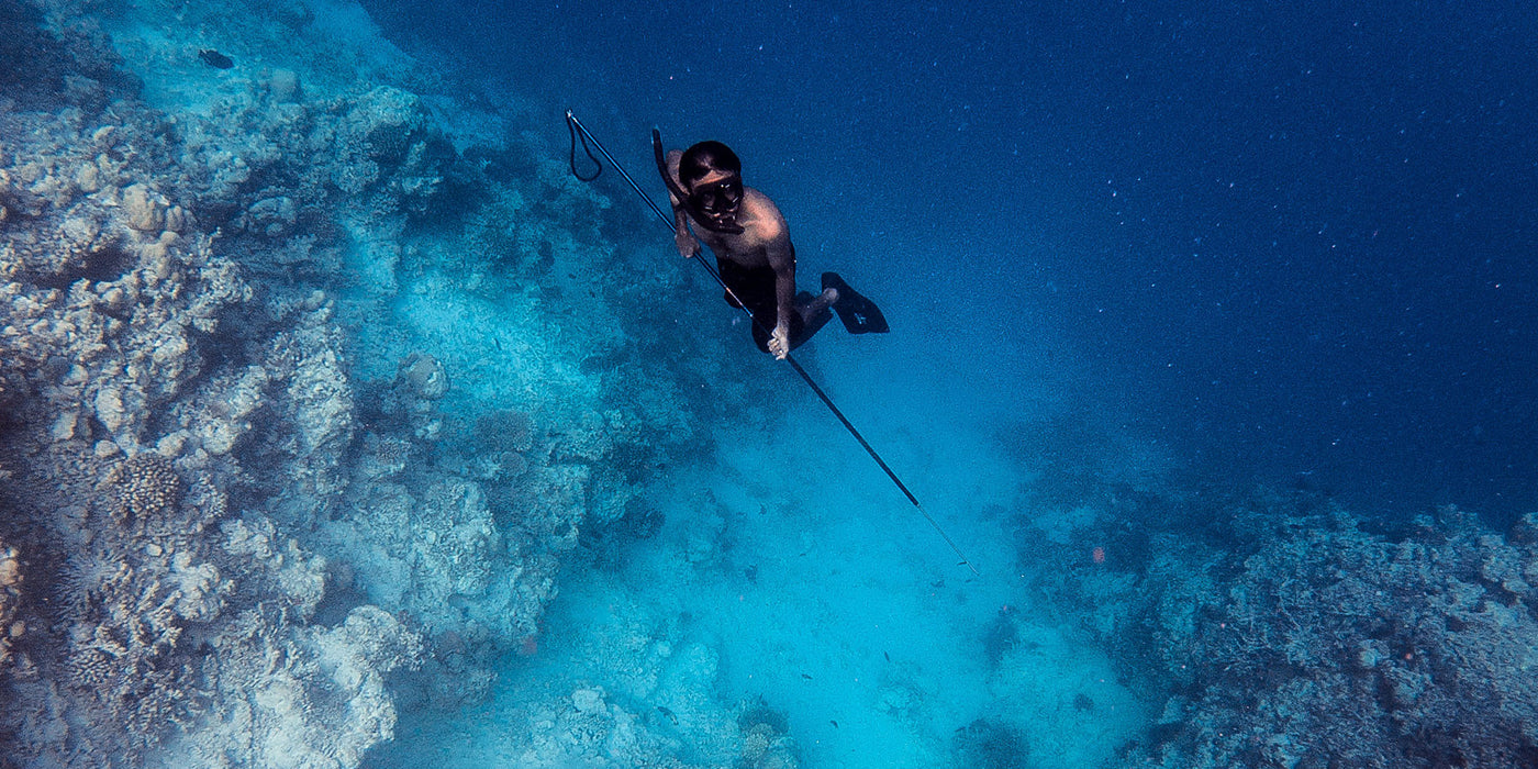 10 Things You Should Know Before Go Spearfishing